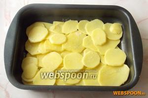 Картофель чистим, моем и нарезаем пластинами. Кладём в форму для запекания. Солим и перчим по вкусу.
