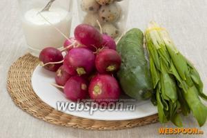 Подготовить сметану, отварные перепелиные яйца, редис, огурец, черемшу.