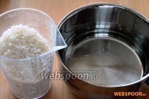 Приготовим рис: крупу тщательно промываем в холодной воде, затем  заливаем холодной водой в пропорции 1:1.