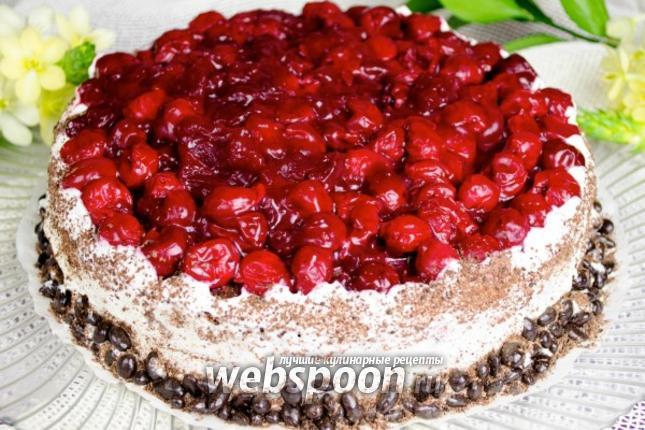 Фото Шоколадный торт с вишней