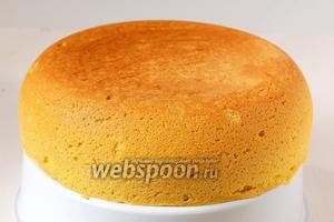 Сразу после выпечки вынуть бисквит из формы и дать ему остыть. Такой бисквит вкусен с молоком, чаем, кофе. Можно также его разрезать на коржи и прослоить любимым кремом.