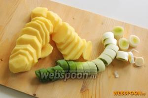 Очистим картофель и нарежем шайбами шириной около 3-5 мм. Лук очистим от затвердения и нарежем так же шайбами шириной 1 см.