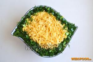 Оставляем сыр для последнего слоя и зелень для украшения. Если подаете салат не сразу, закройте его пищевой плёнкой, чтобы сыр не засох.
