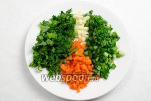 Зелень петрушки и укропа измельчить, лук и чеснок нарезать мелко, морковь нарезать кубиком.