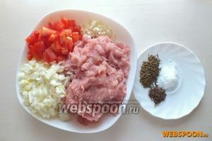 Нарежьте кусочками лук и томаты. Измельчите чеснок. Приготовьте из индейки фарш. Подготовьте специи и соль.