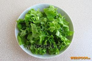 Листья салата вымыть в проточной воде, обсушить и крупно порезать.