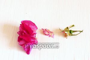 Каждый цветок чайной розы надо взять в левую руку, зажав лепестки в ладонь. Правой рукой оторвать зелёную часть. Ножницами отрезать белые кончики лепестков.