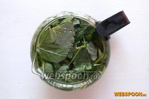 Положите травы в прогретый чайник и залейте кипятком.