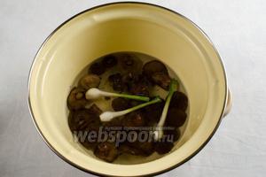 Грибы промыть и вбросить в кипяток с луком. Проварить в течение 15 минут.