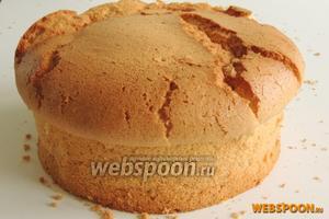Готовим  шифоновый бисквит с ванилью  без лимонной цедры. Дадим ему выстоять не менее 5 часов.