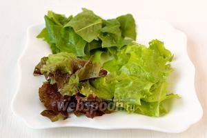 Тем временем салаты и шпинат помыть, порвать на кусочки.