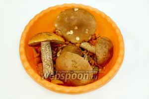 На первом этапе нам нужны только грибы — у меня лисички, сыроежки, подосиновики и подберезовики и вода.