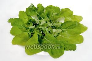 На большой тарелке делаем «подушку» из вымытых и обсушенных листьев салата. Крупные нужно порвать, край декорировать  верхушками салатных листьев.