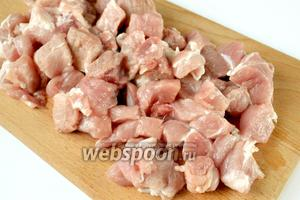 Мясо промываем, обсушиваем салфеткой и нарезаем небольшими кусочками.