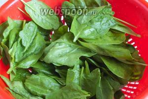 Шпинат промыть, отделить листья от стеблей. Забросить шпинат в кипящую воду на 1 минуту. Вынуть, остудить.
