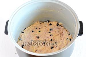 Тесто выложить в смазанную маслом чашу мультиварки (у меня мультиварка Поларис).