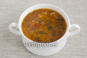 Суп желательно подавать сразу после приготовления.