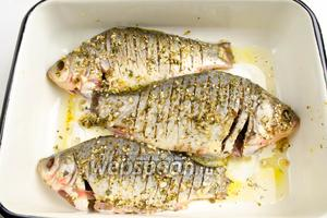 Рыбу переложить в судок, форму для запекания. Тщательно втереть маринад в тушки карасей. Накрыть плёнкой. Поставить в холодильник на 1 час мариноваться.