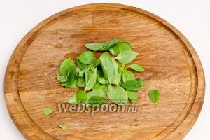 Базилик помыть, отделить листочки от стеблей, просушить и нарезать полосками, если листочки большие.