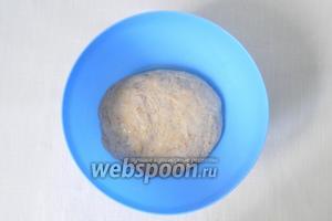 Глубокую миску смазываем подсолнечным маслом и кладём в неё тесто.