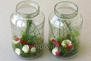 На дно стерилизованных банок выложить пряную зелень, чеснок, острый перец и другие пряности.