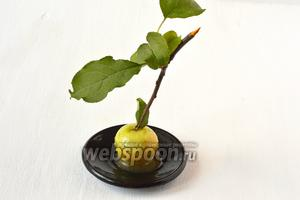 Яблоки в карамели готовы!