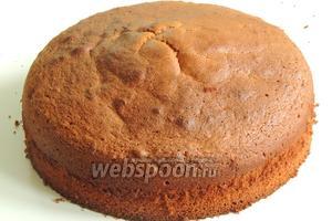 Если бисквит приготовлен для торта, то нужно «дать отдохнуть» не менее 5 часов, так легче потом с ним дальше работать. Если  к чаю, как пирог, то можно сразу пробовать. Приятного аппетита!