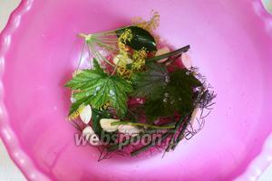 На дно большой миски насыпать слой соли, устелить листьями и чесноком.
