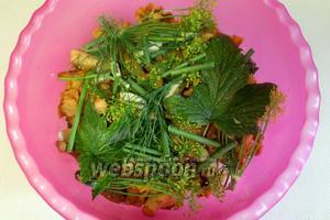 Уложить все грибы, сверху выложить оставшиеся пряные листья, соль, укроп и чеснок.