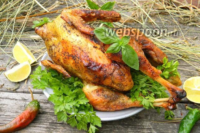 Фото Курица на сене
