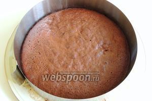 Тёплый корж кладём на блюдо и заключаем в кольцо для тортов.