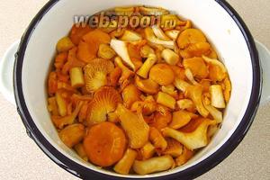 Опустить грибы в кипящую подсоленную воду и отварить в течение 15 минут.