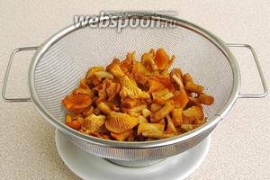 Готовые грибы выложить на дуршлаг и дать стечь жидкости.