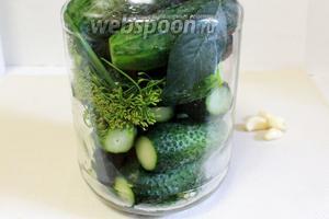 Уложить плотно огурцы, чередуя с зеленью.