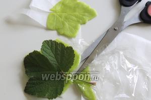Для украшения раскатаем сново марципан между 2-мя слоями плёнки. Накладываем листик смородины и вырезаем. Таким образом вырезаем 3 листка.