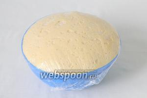 Накрываем пищевой плёнкой и оставляем в тепле на 30 минут. Тесто увеличится в объёме в 3 раза.