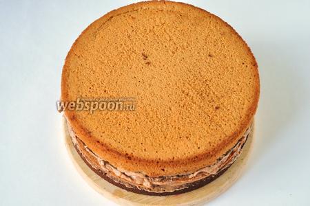 Чередуя шоколадные коржи с белыми, собрать торт, смазывая, каждый корж кремом.