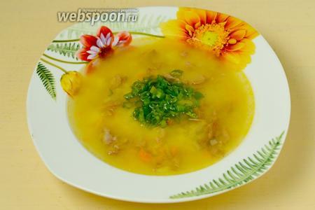 При подаче суп посыпаем зеленью (можно использовать в смеси или по отдельности зелёный лук, укроп, петрушку). Подаём с мелкими сухариками или гренками.