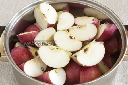 Яблоки промыть, нарезать крупно вместе с семенами. Сложить в кастрюлю.