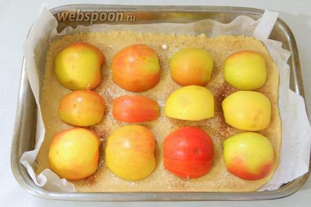 Выкладываем яблоки вниз срезом.