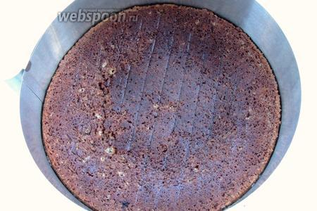 Поместим один из коржей на блюдо и заключим его в кулинарное кольцо.