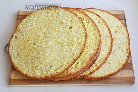 Разрежьте охлажденный бисквит на 4 коржа.