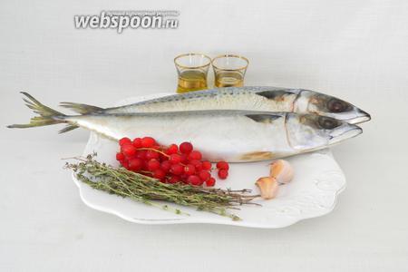 Для приготовления запечённой скумбрии с красной смородиной возьмём скумбрию, тимьян, чеснок, красную смородину, оливковое масло, лимонный сок или половинку лимона, соль и перец.