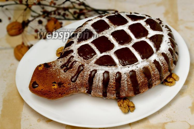 Фото Тыквенный пирог Черепаха с шоколадной глазурью