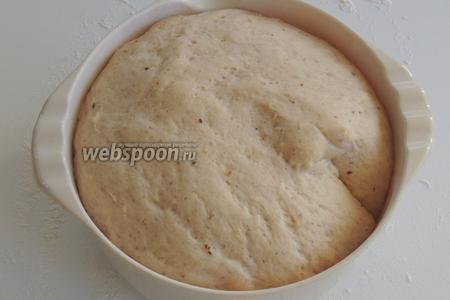 Ставим в тёплое место, накрыв, чтобы тесто подошло в 2,5 раза. Я пользуюсь духовкой при 40°С, тогда понадобится всего приблизительно за 45 минут.