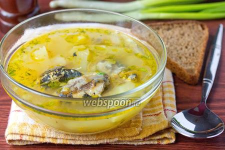 Суп с консервами «Сардины в масле»
