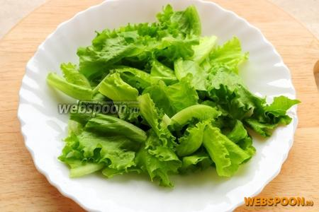 Листья салата нарвите руками.