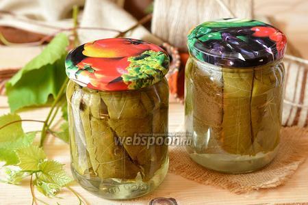 Фото рецепта Маринованные виноградные листья