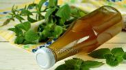 Фото рецепта Мятный сироп
