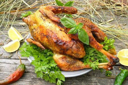 Курица на сене